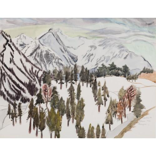 Bäume vor Bergen (bei Bayrisch Zell)