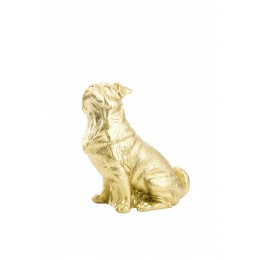 Mops, gold