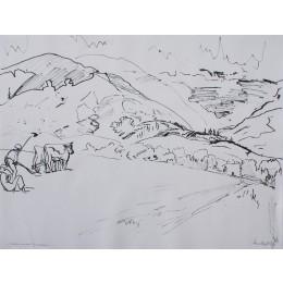 Pflüger in den Pyrenäen